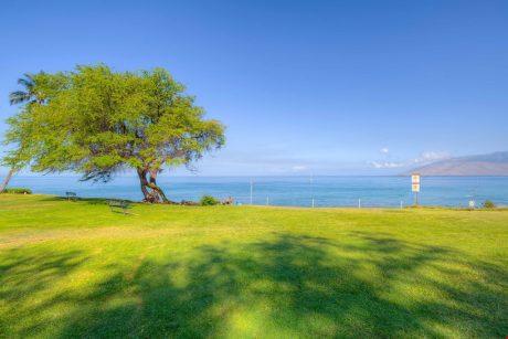 Kamaole Beach - Kamaole Beach 1 features spacious lawn and recreation areas.