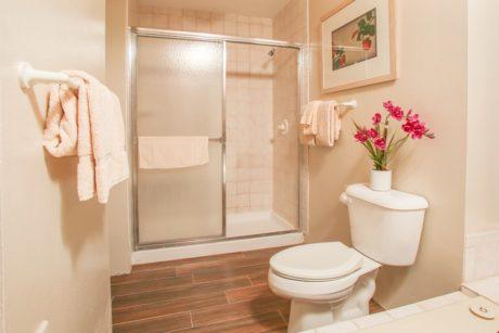 Sands of Kahana 366 - Second Bathroom - Shower