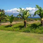 Bay Villa 37G4 View