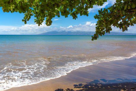 Sands of Kahana 318 Complex Beach 2