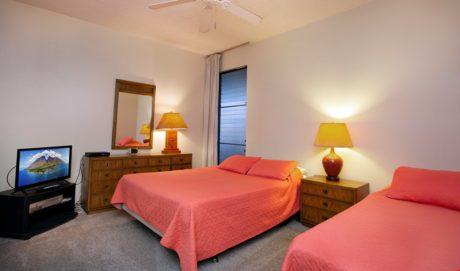 Sands of Kahana 336 Guest Bedroom