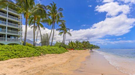 01. LS Beachfront