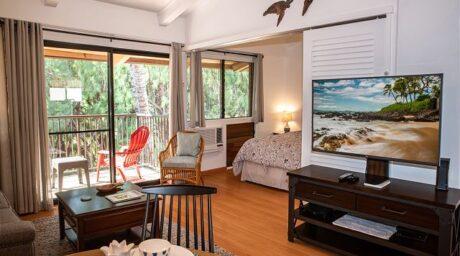 Living Room / Lanai