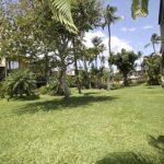 Interior lawn of Kihei Garden Estates
