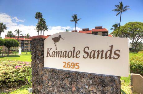 Kamaole Sands (6)