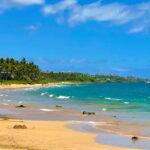 Mana Kai Maui (10)