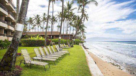 Paki Maui #211