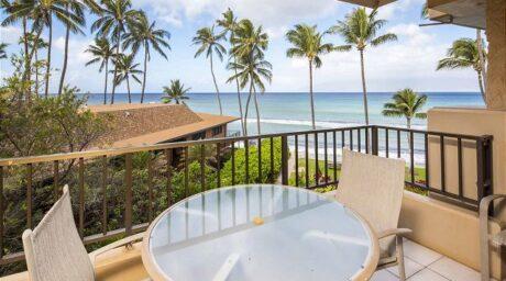 Paki Maui #310