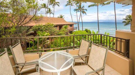 Paki Maui #210